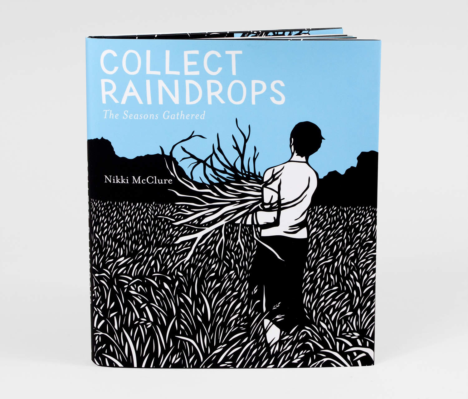 Collect Raindrops - book by Nikki McClure